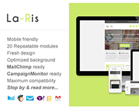 LaRis, Minimalist Business Email Template