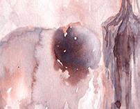 Aquarelle Paintings