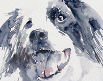 watercolor dog