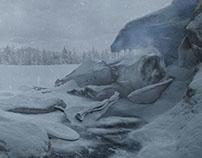 Focke-Wulf crashed in the snow