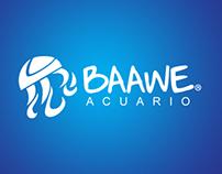 BAAWE: Logotipo y señalética