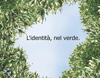 IDTREE: un' App che identifica gli alberi