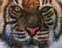 Tigre con acrílicos