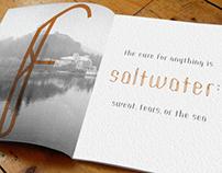 DIVERGENT font book