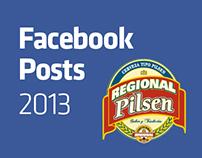 REGIONAL PILSEN - FB Posts 2013