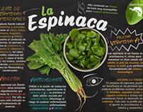 VIda saludable- Healthy life infographics