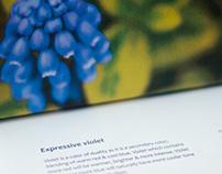 Violet color workshop - Journey of expressive mystery