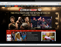 Bellator Online Ad