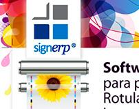 Diseño Web- Infomail Signerp