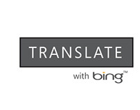 Bing Translator Widget