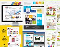E-commerce / Intranet