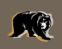Providence Bruins Internship