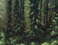 Lesbian- Forestelevision album art.
