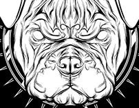 Bulldog - T-shirt Illustration