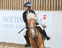 Horse riding charity event