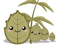 Kawaii Tea: Green Tea Package