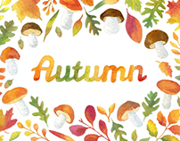 Autumn Backgrounds and Patterns