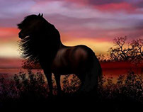 Landscape Sunrise and horse