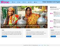 BRAC WASH Data collection web engine