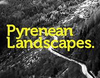Pyrenean landscapes