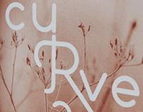 CURVE NY 2013