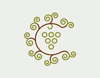 IGP Codru - Logo design process