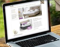 EKENS Website 2012-2013 - Web design