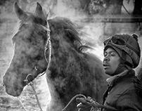 Equestrian Glory