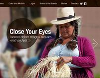 Website design - U-HAT