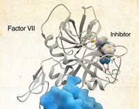 Coagulation Factor VII