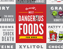The World's Most Dangerous Foods for Dogs
