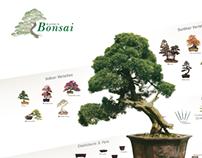 Bonsai Visual Toolkit