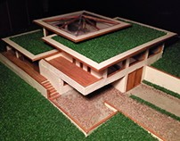 Model - Downhill house