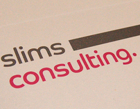 Slims consulting brand identity