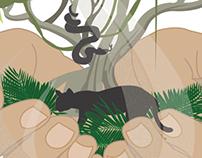 Save the Rainforest Logo