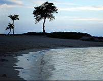 Hawaii 2008-2012