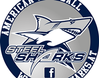 Steel Sharks Traun