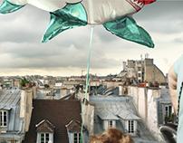 20 rue Debelleyme