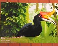 ReBranding - KL Bird Park