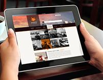 Punthill Website Concept