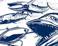 SKA Kingfish