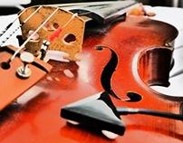STRING WAVES - the looping violin