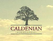 Caldenian Agribusiness