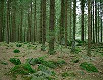 norveška šuma