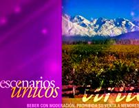 VIDEO: Bodega Estancias Mendoza Analogía