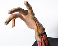 anatomical esculture 2