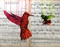 Birds on Music Score Series
