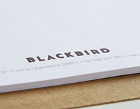 Blackbird Corporate Identity