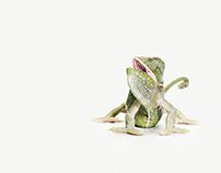 "Lizard mayhem ""Odd one out"""