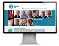 Irish Gerontological Society (IGS) website design